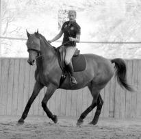 Le cheval avec vous - Sophie Puech